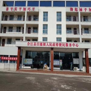 合江县便民服务中心上线银之鑫排队叫号系统